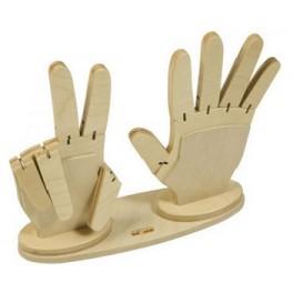 數手指遊戲模型